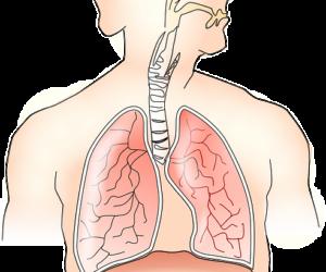 Заговор от астмы