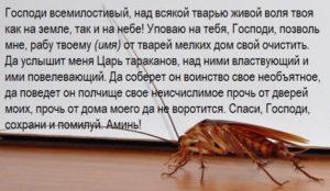 Заговор от тараканов, 3 избавляющих заговора